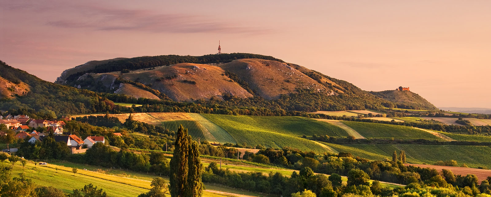 contact the team of wine travel in CZ