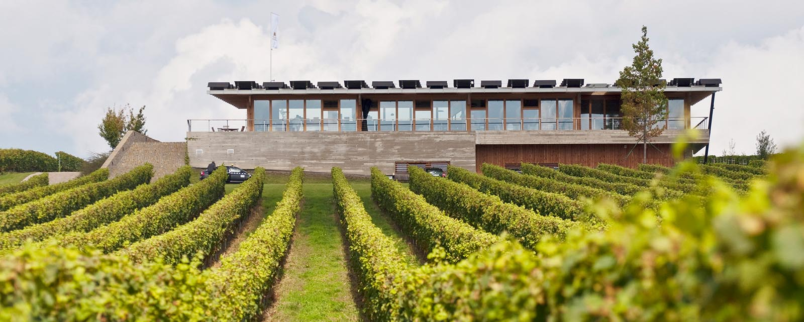 discover wine tours in Czech for a good corporate moment